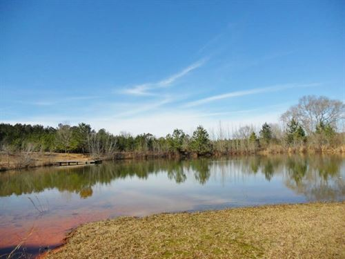 Home, Lodge, Hunting Land For Sale : Tylertown : Walthall County : Mississippi