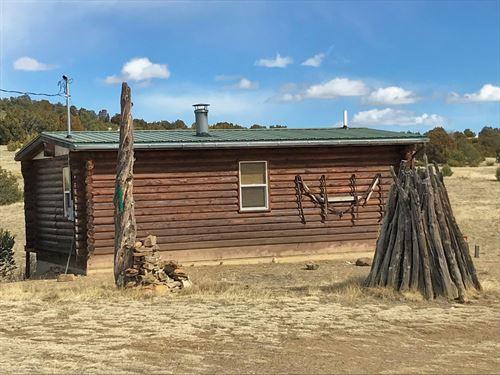 Cozy Cabin 35 Acres Trinidad : Trinidad : Las Animas County : Colorado
