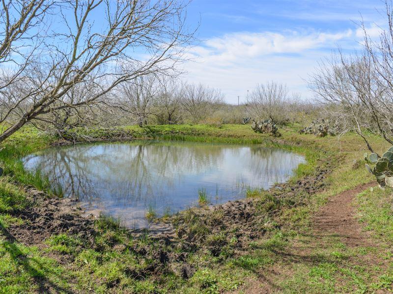 Atascosa Land : Ranch for Sale : Pleasanton : Atascosa County : Texas