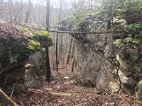 Reduced Soddy Creek Preserve : Sale Creek : Sequatchie County : Tennessee