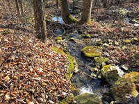 Soddy Creek Preserve, 2,629 Acres : Soddy Daisy : Sequatchie County : Tennessee