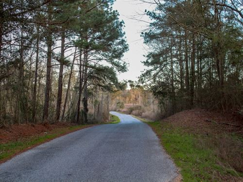 35 Acres In Covington County In Col : Collins : Covington County : Mississippi