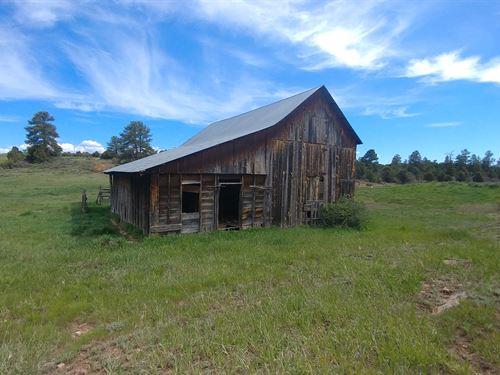 Colorado Land Dolores, Co, Views NO : Dolores : Montezuma County : Colorado
