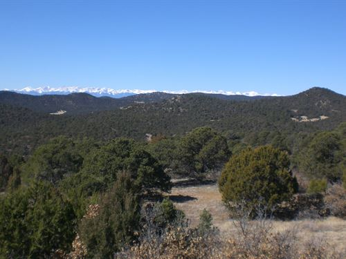 Vacant Mountain Land Trinidad : Trinidad : Las Animas County : Colorado