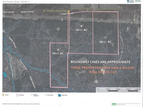 Timber, Recreational Tract, East : Laneville : Rusk County : Texas