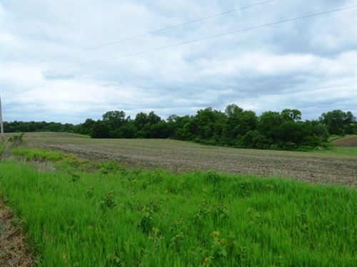 Appanoose County Land For Sale : Melrose : Appanoose County : Iowa
