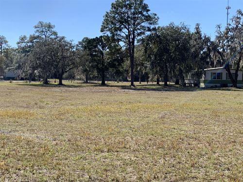 Home & 15+ Acres, Owner Financing : Homosassa Springs : Citrus County : Florida