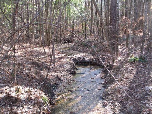 Beautiful Timberland With Creek : Marbury : Autauga County : Alabama