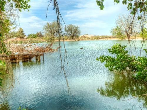 Drip Irrigated Farm, Duck Pond, Hay : Deming : Luna County : New Mexico