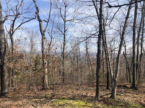 Bald Eagle 10 : Green Forest : Carroll County : Arkansas