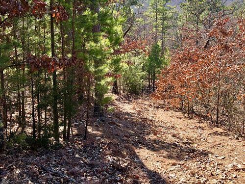 Oklahoma Hunting Land For Sale : Talihina : Latimer County : Oklahoma