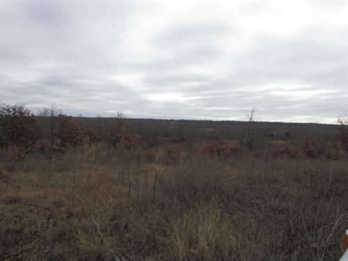 120 Acres Recreational Property, NE : Chelsea : Rogers County : Oklahoma