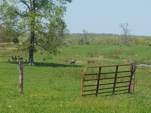 Land For Sale, Hunting, Farming : West Plains : Howell County : Missouri