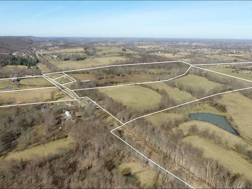 Absolute Multipar Farm Auction 200 : Danville : Boyle County : Kentucky