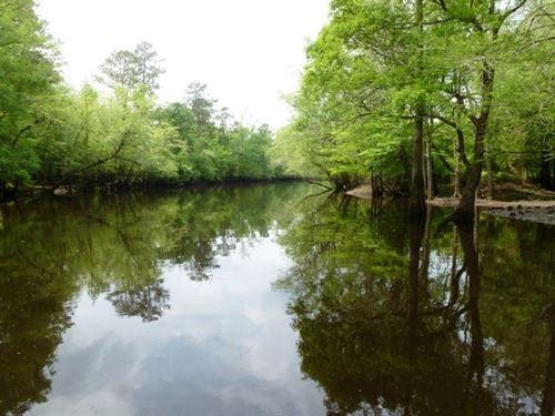 Riverfront Land, Quiet Waters Dr : Chinquapin : Duplin County : North Carolina
