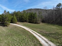North Ga Mountain Property : Ellijay : Gilmer County : Georgia