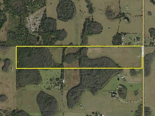 Polk County Acreage : Lakeland : Polk County : Florida