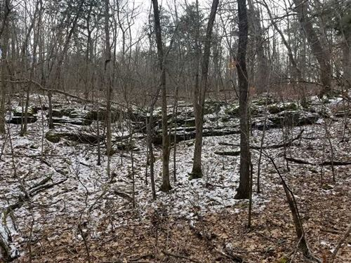 35 Wooded Acres Near Houston, MO : Houston : Texas County : Missouri