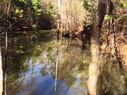 55 Off Grid Hunting And Recreation : Jacksonville : Cherokee County : Texas