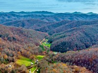 Wooded Acres By Road & Electricity : Lansing : Ashe County : North Carolina