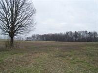 Franklin County Farmland : Carnesville : Franklin County : Georgia