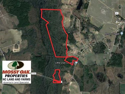 121 Acres of Hunting Land For Sale : Maxton : Robeson County : North Carolina