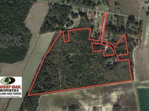 Under Contract, 35 Acres of Hunti : Evergreen : Columbus County : North Carolina