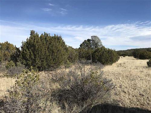 11 Acres Near White Oaks, NM : White Oaks : Lincoln County : New Mexico