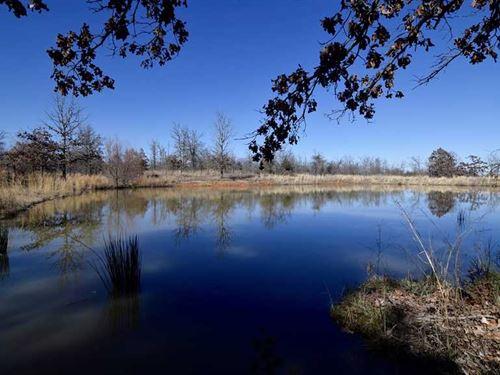Prime Recreational Trophy Buck Hun : Antlers : Pushmataha County : Oklahoma