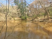 Pigeon Creek Tract : Greenvville : Butler County : Alabama