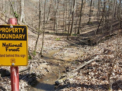 Talladega National Forest Base Camp : Waldo : Talladega County : Alabama
