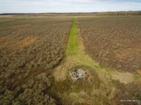355 Ac, Deer & Duck Hunting Wr : Fort Necessity : Franklin Parish : Louisiana