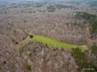246 Ac, Hunting & Recreational : Black Hawk : Carroll County : Mississippi