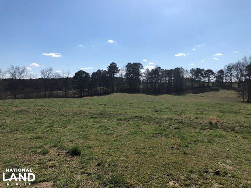 County Road Cattle Farm And Homesit : Phil Campbell : Franklin County : Alabama