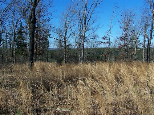 10 Acres For Sale In Arkansas Ozark : Leslie : Searcy County : Arkansas