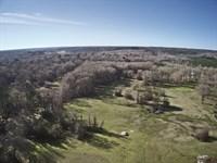 Recreation Land Auction : Hallsville : Harrison County : Texas