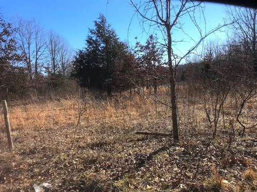 Land For Sale in Alton, MO : Alton : Oregon County : Missouri