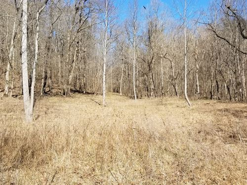 55.85 ac Country Property, Creeks : Linden : Perry County : Tennessee