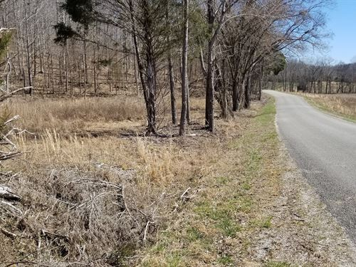 56.18 Ac Country Property, Creek : Linden : Perry County : Tennessee