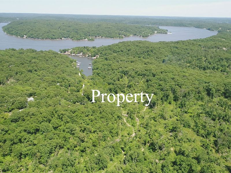 Owner Financed 81 Acres : Ranch for Sale : Camdenton