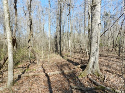 43Ac Wooded Homesite & Hunting : Milledgeville : Baldwin County : Georgia