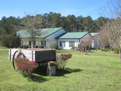 Homochitto Escape : Union Church : Lincoln County : Mississippi