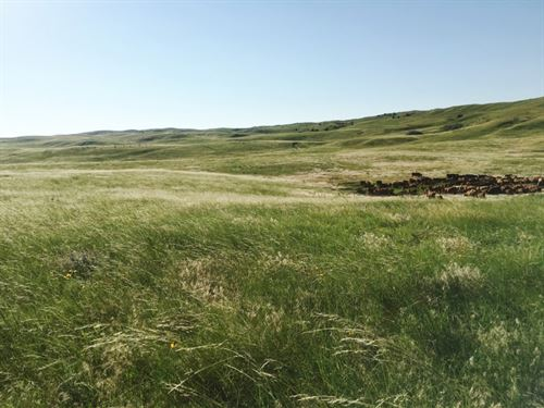 Duck Bar Ranch : Valentine : Cherry County : Nebraska