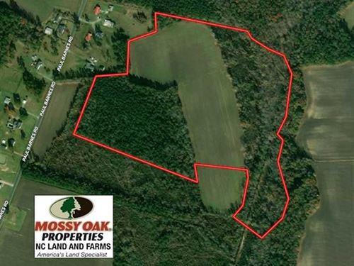 47 Acres of Farm And Timber Land : Chadbourn : Columbus County : North Carolina