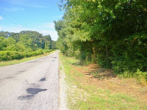69.69 Acres Home Site/Hunting : Smithdale : Amite County : Mississippi