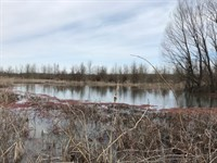 Extreme Hunting Tract Duck And Deer : Widener : Saint Francis County : Arkansas