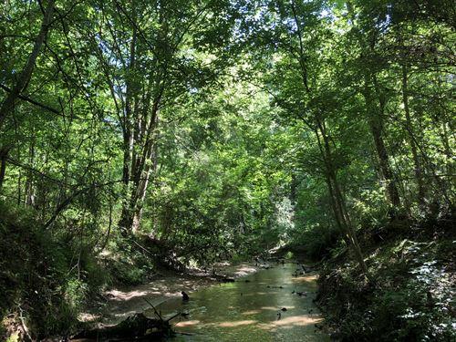 Mountain Creek Timberland : Belton : Greenville County : South Carolina