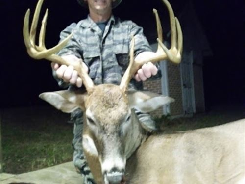 160 Acres Of Tremendous Hunting : Preston : Webster County : Georgia