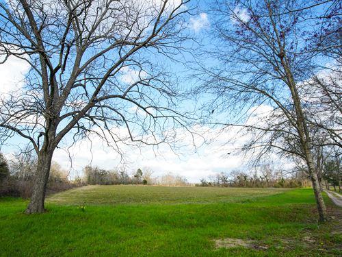 Westside Farm : Statesboro : Bulloch County : Georgia