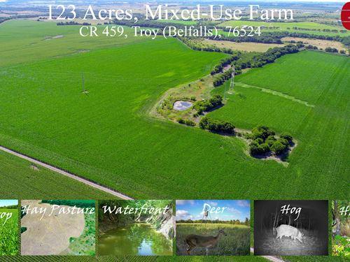 Mixed-Use Farm, Troy, Falls Co : Troy : Falls County : Texas